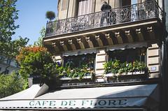 / paris / (aubreyrose) Tags: travel flowers food paris france window restaurant spring cafe europe saintgermain springtime sunnyday parisinthespring cafedeflore