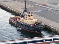 IMG_3356 Svitzer Tug Gloucester. (Boat bloke) Tags: ship harbour australia tug sydne