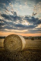 Wheat harvesting (xavier.snyders) Tags: cloud de belgium wheat harvest ballot paille givry hainaut