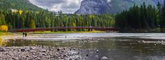 Pedestrian bridge (leandrewgoseco) Tags: alberta canada explore adventure banff bowriver bridge landscape fall river beauty nature trees pentax travel travelalberta