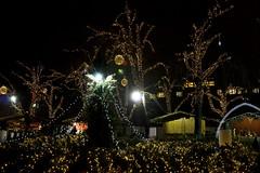 Christmas Fair in Budapest (Majorimi) Tags: fair market canon eos digital 70d budapest night light christmas xmas people street winter cold celebration buildings city lights decoration