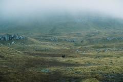 (André Terras Alexandre) Tags: nólsoy faroe islands film analog 35mm