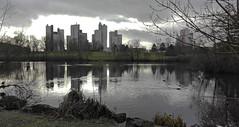 TOURS AUREOLEES. (jmsatto) Tags: tours étang reflets gel arbres essonne nature