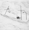 In a Cemetery, Portland (austin granger) Tags: cemetery portland oregon snow winter pvc pipe makeshift grave cross christianity death memorial evidence square film cold gf670