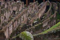 Rome 2010 1531