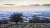 2016 Malvern - Mist and Frost (Birm) Tags: castlemorton church tower malvern hills british camp dawn morning frost mist view severn valley landsacape sony fields trees villages