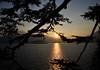 Ognuno sta solo sul cuor della terra trafitto da un raggio di sole: ed è subito sera. (illyphoto) Tags: photoilariaprovenzi illyphoto varenna comolake lakecomo lagodicomo tramonto sunset