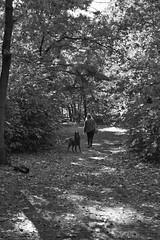 A girl and her dog (Martijn A) Tags: dog hond hund chien woman vrouw frau femme candid blackandwhite bw monochrome zwartwit schwarzweis noiretblanc canon d550 dslr 35mm lens wwwgevoeligeplatennl