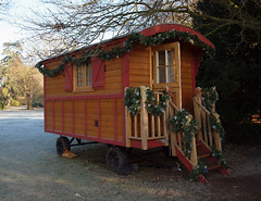 2016_12_0624 (petermit2) Tags: clumberpark clumber sherwoodforest sherwood nottinghamshire nationaltrust nt christmas