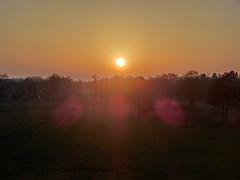 Abends am Deich (philosaphira) Tags: borgfeld hollerdeich deich dyke sonne sun sol soleil diek sonnenuntergang sunset solnedgang solnedgång coucherdesoleil coucher de winter vinter hiver abends dämmerung dawn
