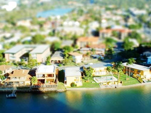 gold coast miniature