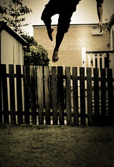 Gravity Always Wins (Mark Lobo .) Tags: leave up grass fence wow photography jump backyard mark suburbia australia 100v10f brisbane gravity card kangaroo lobo suburb tagme exit enter radiohead 30d kangaroopoint card1 fakeplastictrees marklobo ultraselected suburbanality wwwmarklobocomau