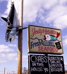 Crabs In The House Yo! (Sister72) Tags: blue sky fish signs sign clouds shark newjersey funny lol yo nj bluesky seafood catch monmouthcounty crabs jerseyshore neptune ghetto catchy fishery jodys lobsterbisque catchoftheday lobstersalad neptunenj crabsinthehouseyo jodysfishery howwesayitinneptune