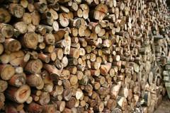 www (Alan Spring ) Tags: wood texture textura many farm madeira muita sitio lenha bateia