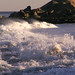 ocean image, photo or clip art