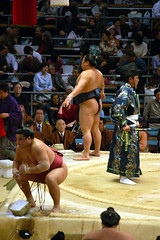 "sumo ""i shouldn't have eaten the suchi"" (icarusjapan) Tags: sports japan wrestling fat battle osaka sumo shinto basho fundoshi actionphotography"