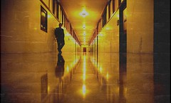 Self Portrait, April 6, 2006 (Thomas Hawk) Tags: sanfrancisco california city usa selfportrait man reflection topf25 standing long unitedstates cityhall 10 unitedstatesofamerica corridor fav20 hallway suit fav30 civiccenter sanfranciscocityhall fav10 fav25 fav40 superfave