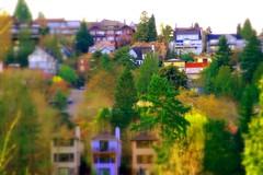 Seattle Housing - Miniature effect (Jenni Reynolds-Kebler) Tags: houses house landscape miniatures miniature 100views housing 400views postprocessing 58points