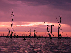 Sunrise at Lake Mulwala (oz_britta) Tags: lake sunrise australia lakemulwala fcsetsrises
