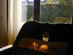 El sol para todos - The sun for all (mherrero) Tags: autumn sun sol cortina window argentina automne contraluz lafotodelasemana ventana soleil curtain tail cordoba otoño fenêtre domingo dimanche backlighting paques pascuas mherrero intoout mes042006 lfscontraluces