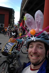 Bunny on a Bike ride