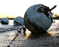 Jim Buoy (RichLegg) Tags: sunset arizona lake beach water utah havasu buoy leggnet legg leggnetcom richlegg richlegg wwwleggnetcom