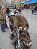 Fur Motorcycle