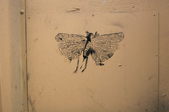 Stencil - by djwess