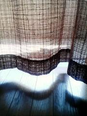 spring soft breeze (nao☆) Tags: beautiful japan spring curtain breeze