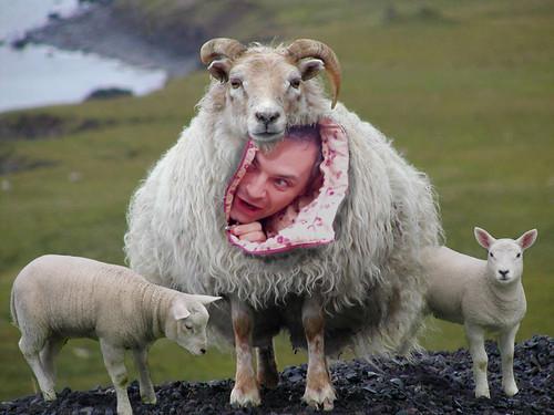Como una cabra: ¿ Wayne el cualo ?