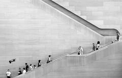 Upstairs, Downstairs (Hoffmann) Tags: art topv111 stairs washingtondc dc washington topv555 topv333 gallery d70 nikond70 topv1111 escalator topv999 steps 2006 nationalgallery national dcist topv777 oneyear nationalgalleryofart nikonstunninggallery ngtdc