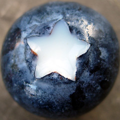 "blueberry star (a.k.a. Anti-war Blueberry)renamed ""Got Blueberry?"" for show (dogfaceboy) Tags: blue topv111 fruit circle square star milk berry topv222 explore blueberry sphere round squaredcircle topv allrightsreserved someonelovesthisshot dogfaceboy lesliefmiller lesliefmiller explwhore"