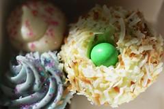 easter cupcakes in a box (cafemama) Tags: easter cupcakes coconut egg cupcake eggs eggcarton sarahgilbert saintcupcake stcupcake
