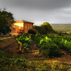 Bastide* (Imapix) Tags: travel house france home photo vineyard bravo photographie provence imapix bastide gatanbourque copyright2006gatanbourqueallrightsreserved gtaggroup goddaym1 pix50 imapixphotography gatanbourquephotography