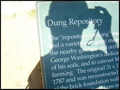 Dung repository