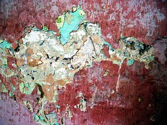 Old Wall (Aleksandra Radonic) Tags: old grandma red house detail green rose wall demolish heart serbia story kosovo layer ruined