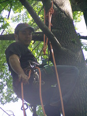 Nick (Jaared58) Tags: birdsanctuary treeclimbing