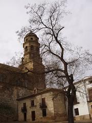 Baeza. Torre y rbol. (fernand0) Tags: baeza