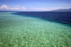 sandbar, unexposed (Farl) Tags: ocean travel blue sea green water paradise tide philippines sandbar clean clear cebu waters santander bais negros sibulan cebusugbo baisbay manjuyod