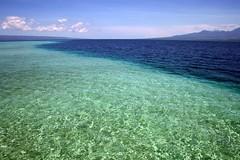 sandbar, unexposed (Farl) Tags: ocean travel blue sea green water paradise tide philippines sandbar clean clear cebu waters santander bais negros sibulan cebusugbo baisbay manjuyod