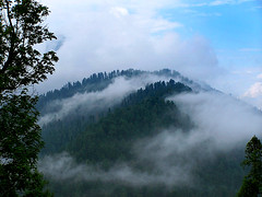the beauty ful peak of mirab jani just oposit to nathia gali the famous hil station now the part of ayubia national park the thick rain of monsoon rain in the home of leopards