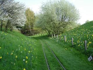 Idyllic railroad