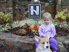 Gareth and Mekenzie November 1st. 035 (delythbryseglenys) Tags: pictures kids grand assortment