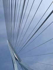 De Zwaan. (P Villerius) Tags: bridge sky holland lines rotterdam brug erasmusbrug kabel erasmusbridge