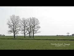 Marken (iamjeffery) Tags: travel netherlands 2006 waterland jeffery