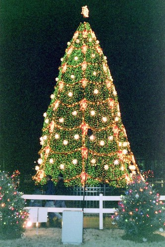 National Christmas Tree 2000