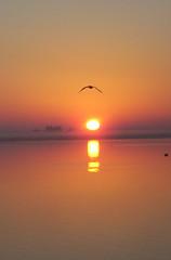 Sunrise through Sea mist (Mundoo) Tags: sea mist water misty sunrise wow geotagged australia msh photohunt hindmarshisland fleurieu geo:tool=yuancc geo:lat=35542633 geo:lon=138888731 femalephotographerscontestpro1 msh0507 msh050712