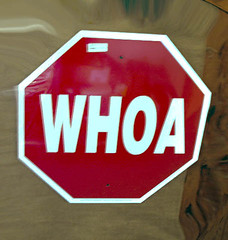 WHOA (ArtsySFMarjie) Tags: red sign stop stopsign whoa command horsetalk