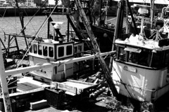 The Waiting Of A Boat: A Boat's Life 2 (Sylvain Sylvain) Tags: ireland sea bw dublin blanco beach branco port canon 350d seaside europa europe negro preto nb weis bianco nero schwarz irlande sylvainsylvain 黑白色 sylvainclep 백색 m3l0dym4k3r 黒い白 까만