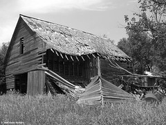 Barn North of Seward, Nebraska